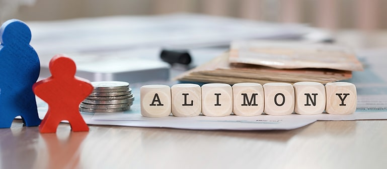 Fort Mill and Rock Hill Alimony Attorney